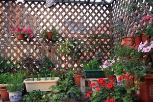 简约复式楼露台花园盆栽装修设计效果图