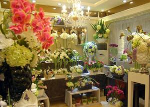 现代简约50平米小花店装修效果图