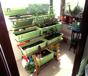意境唯美的大户型都市阳台菜园装修效果图实例