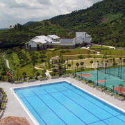 精致的游泳池设计