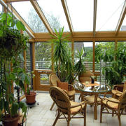 阳光房室内盆栽欣赏