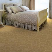 米黄色的地毯欣赏