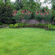 别墅大草坪欣赏
