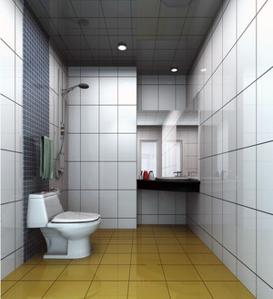 2016小户型欧式风格小卫生间装修效果图实例