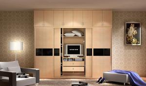 单身小户型公寓朴素卧室大衣柜效果图