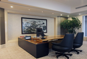 2016精致的老板办公室吊顶装修效果图鉴赏