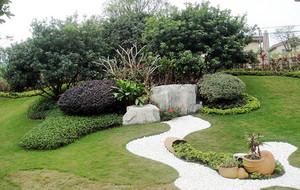 简约自然花园效果图