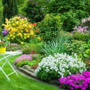 时尚精致花园效果图