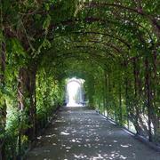 欧式花园长廊效果图