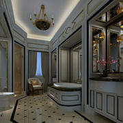 现代都市精美的别墅型卫生间装修效果图欣赏