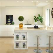 现代简约厨房效果图