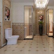 精致瓷砖卫生间装修