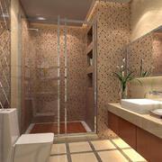 卫生间进精致地板砖装修
