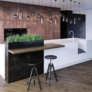 厨房精致吊灯设计