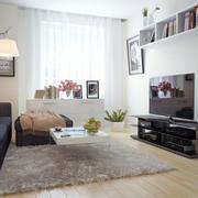 60平米小户型现代简约风格客厅装修效果图