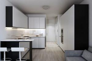 小户型简约时尚主打灰色单身公寓装修效果图
