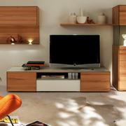 5平米现代风格客厅电视实木柜设计实景图