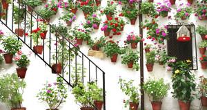别墅欧式风格入户花园装修效果图