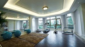 30平米欧式风格别墅健身房装修效果图赏析