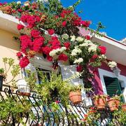 现代唯美的大户型地中海入户花园装修效果图