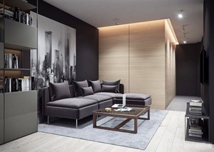 50平米后现代风格小公寓室内整体装修效果图