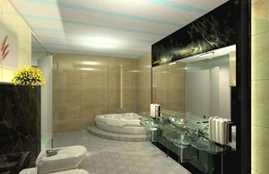 20平米后现代风格豪华卫生间装修效果图