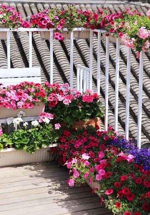 现代风格文艺创意阳台花园装修效果图赏析