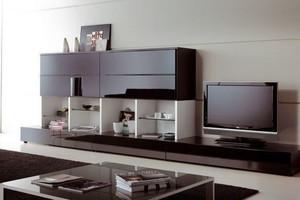 现代风格精致客厅书架装修效果图大全