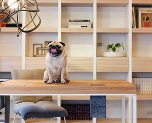 66平米现代风格精装单身公寓装修效果图赏析