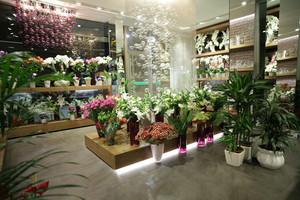 60平米现代风格花店设计装修效果图赏析