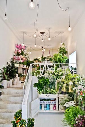 80平米欧式风格精美花店设计装修效果图