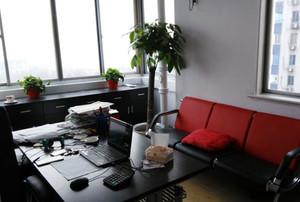 单人单间办公室布局图,这是老板单人办公室布局图,首先办公桌采用的是实木,搭配标准的老板椅,这样就能很好的彰显出老板的威信,非常的有格调。