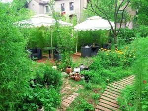 一楼20平米小院花园效果图