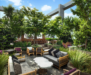 家庭楼顶天台花园