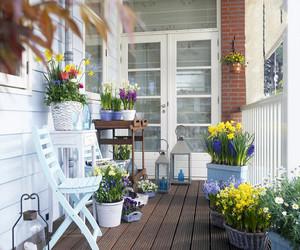 漂亮的大阳台花园图片