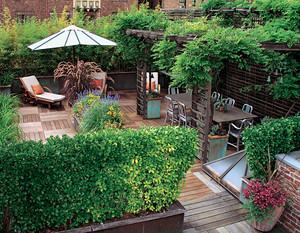 家庭楼顶花园图片大全