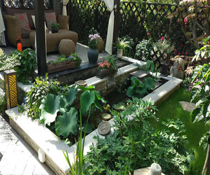 庭院花园设计图