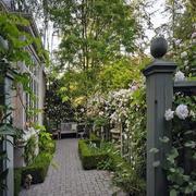 一楼小花园设计实景图