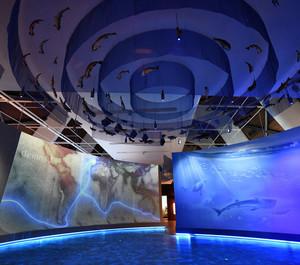 蓝色海洋博物馆装修效果图