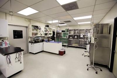 医院办公室装修图片,医院办公室装修设计公司