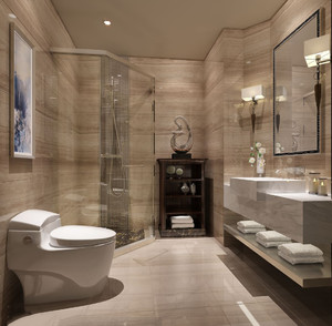 卫生间装淋浴房效果图,一字型卫生间淋浴房效果图