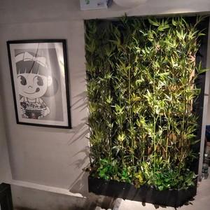 80平米小图书馆植物隔断装修效果图