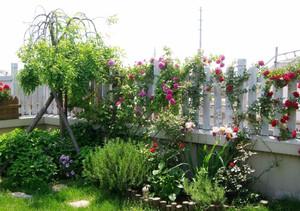 200平方别墅复式二楼阳台花园装修效果图