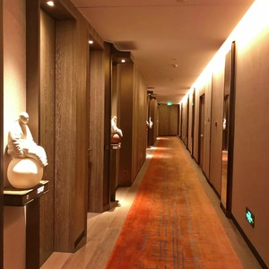 660平古典风格房屋走廊装修效果图