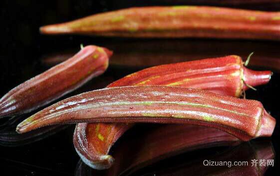 红秋葵观赏图