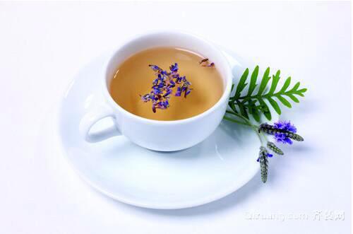 玉兰花茶效果图