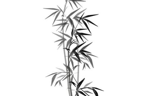 水墨画竹子带来的意境美