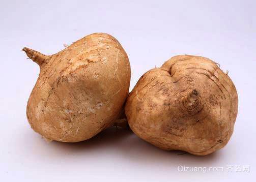 """土瓜根可治""""面黑面疮""""营养最均衡的保健食品"""