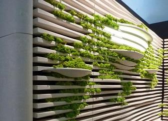 办公室绿植怎么样布置?办公室绿植装饰方案