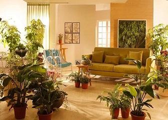 春季怎么做好家具保养 四种材质的家具保养方法